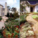 photos_plantings2